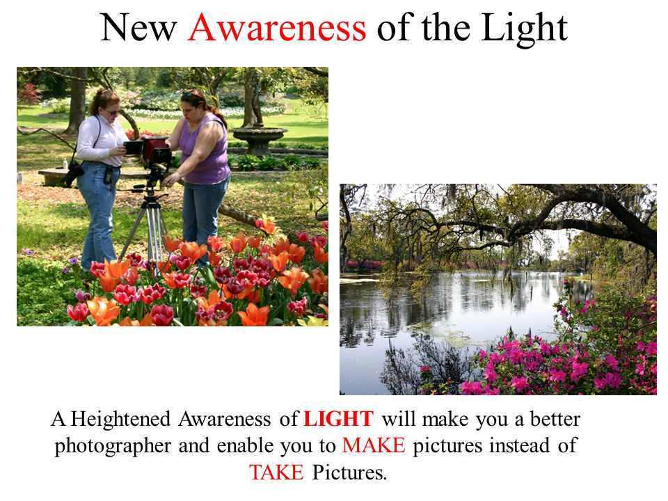 New Awareness of the Light