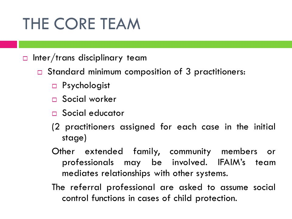 THE CORE TEAM Inter/trans disciplinary team