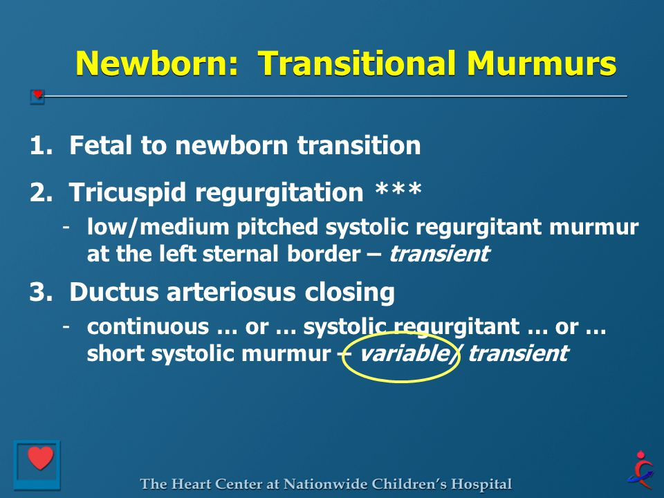 Newborn: Transitional Murmurs