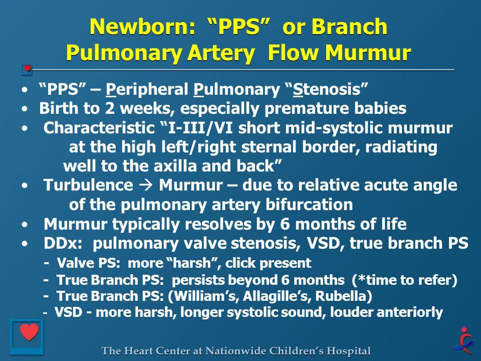 Newborn: PPS or Branch Pulmonary Artery Flow Murmur