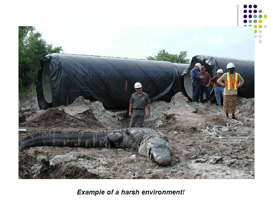 Example of a harsh environment!