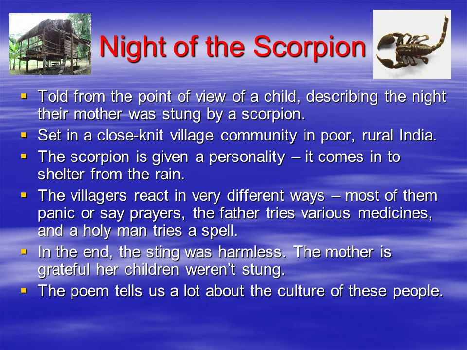 Night of the Scorpion Told from the point of view of a child, describing the night their mother was stung by a scorpion.