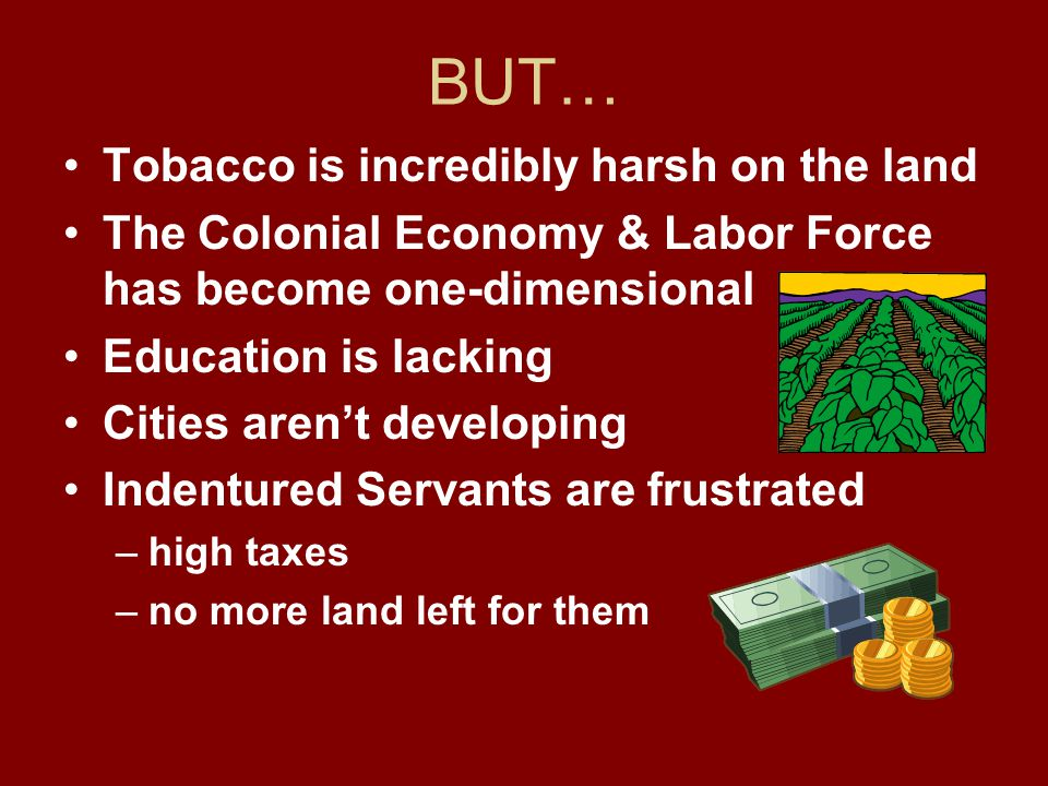 BUT… Tobacco is incredibly harsh on the land