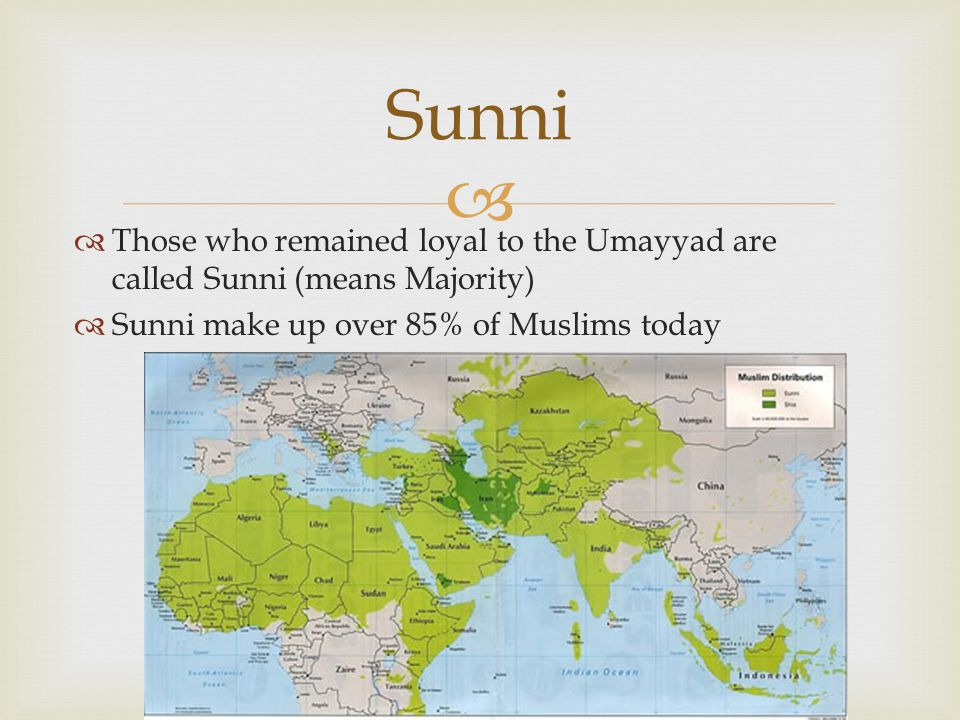 Sunni Those who remained loyal to the Umayyad are called Sunni (means Majority) Sunni make up over 85% of Muslims today.
