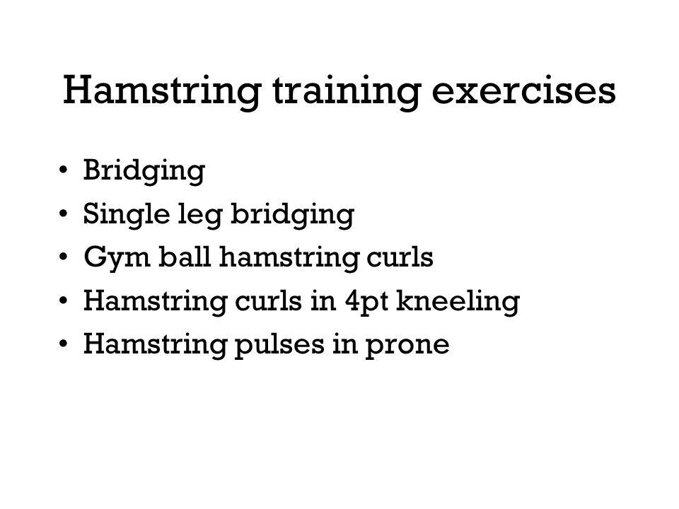 Hamstring training exercises