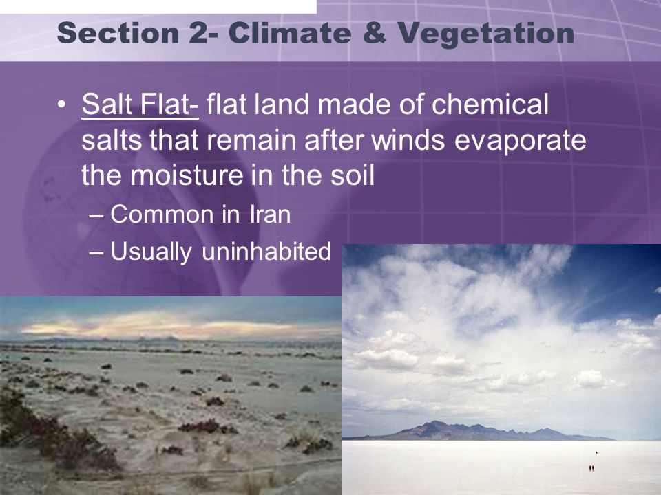 Section 2- Climate & Vegetation