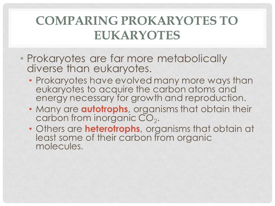 Comparing Prokaryotes to Eukaryotes