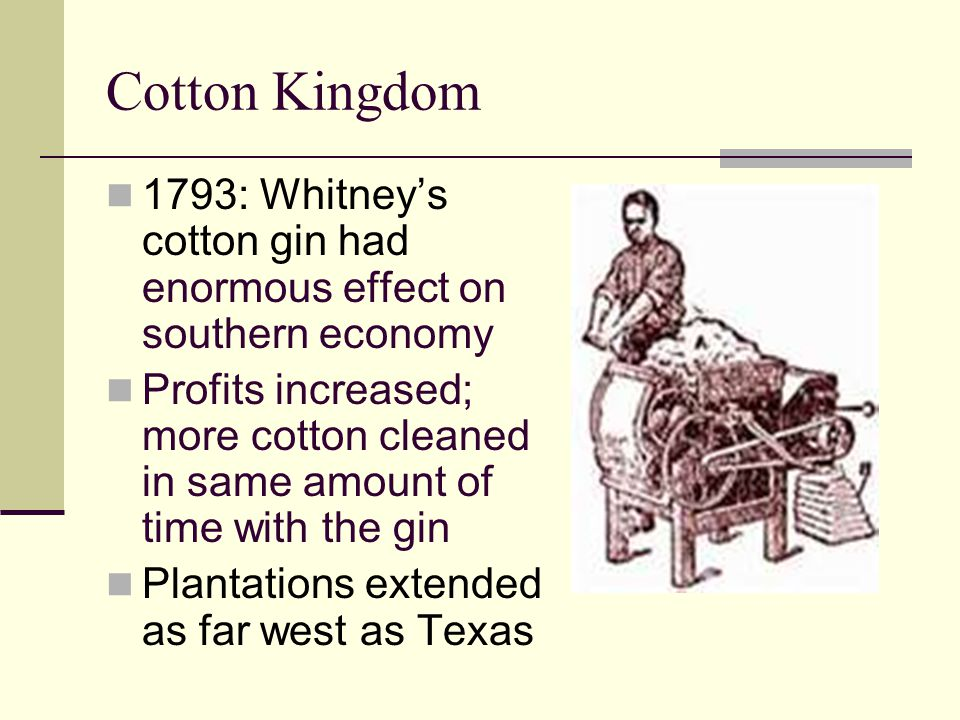 Cotton Kingdom 1793: Whitney's cotton gin had enormous effect on southern economy.