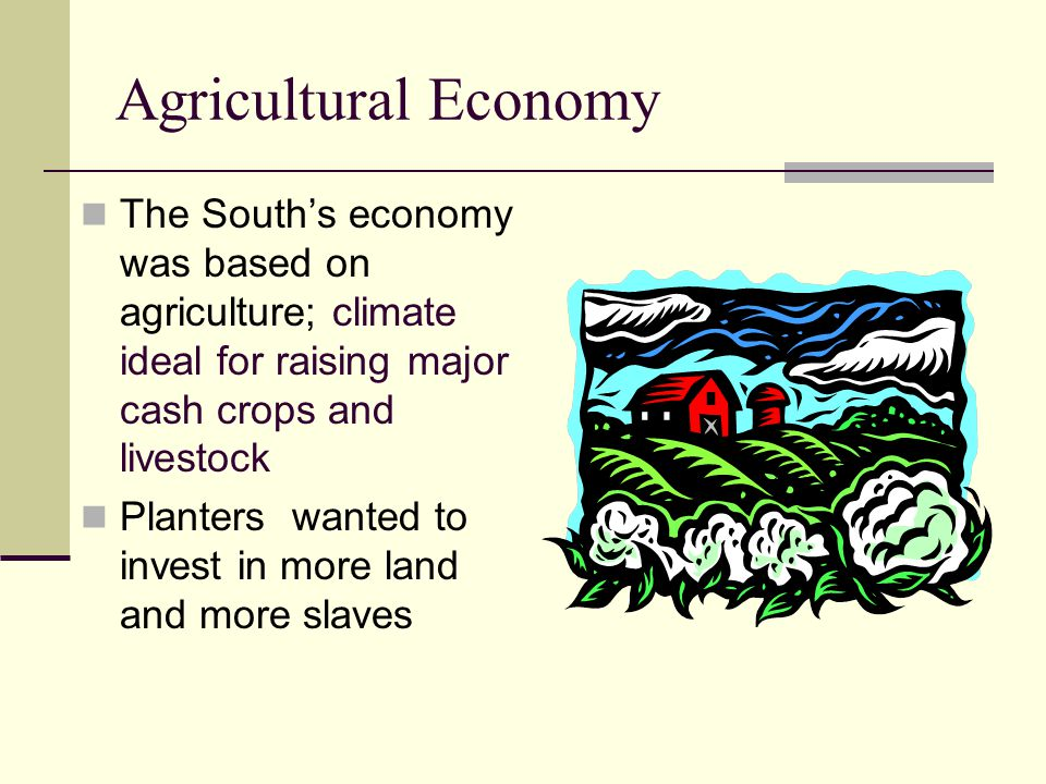 Agricultural Economy The South's economy was based on agriculture; climate ideal for raising major cash crops and livestock.