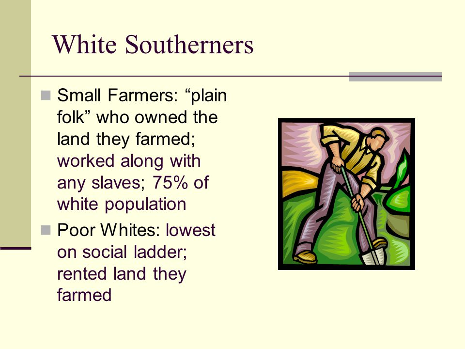 White Southerners Small Farmers: plain folk who owned the land they farmed; worked along with any slaves; 75% of white population.