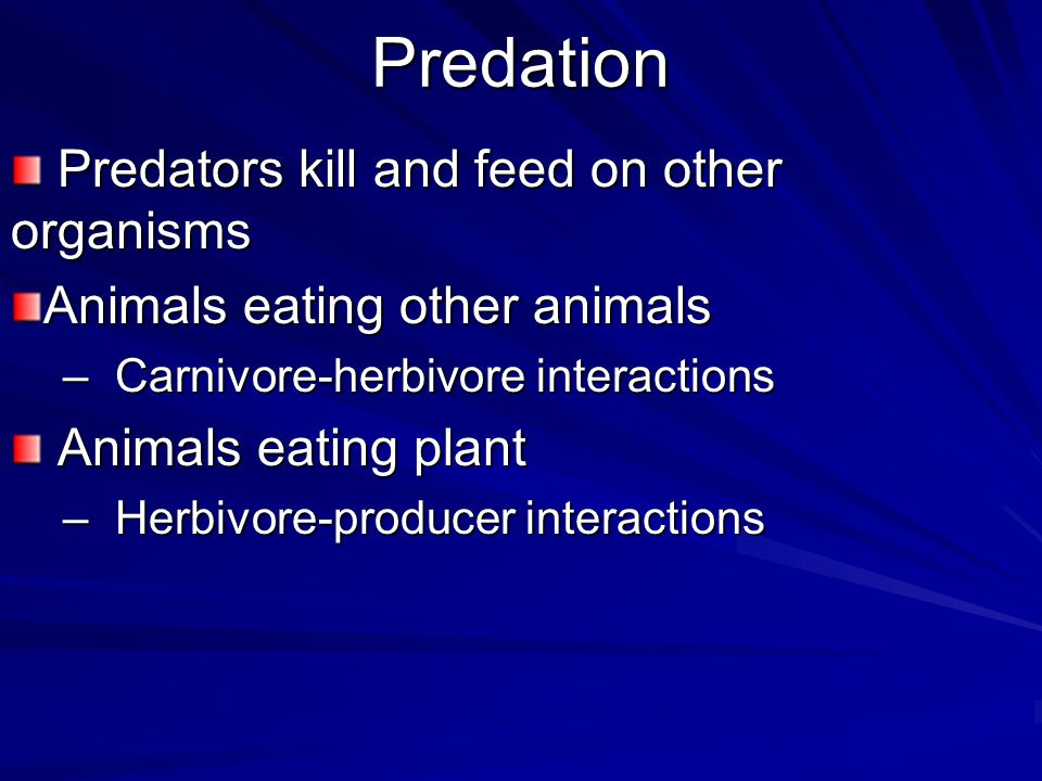 Predation Predators kill and feed on other organisms