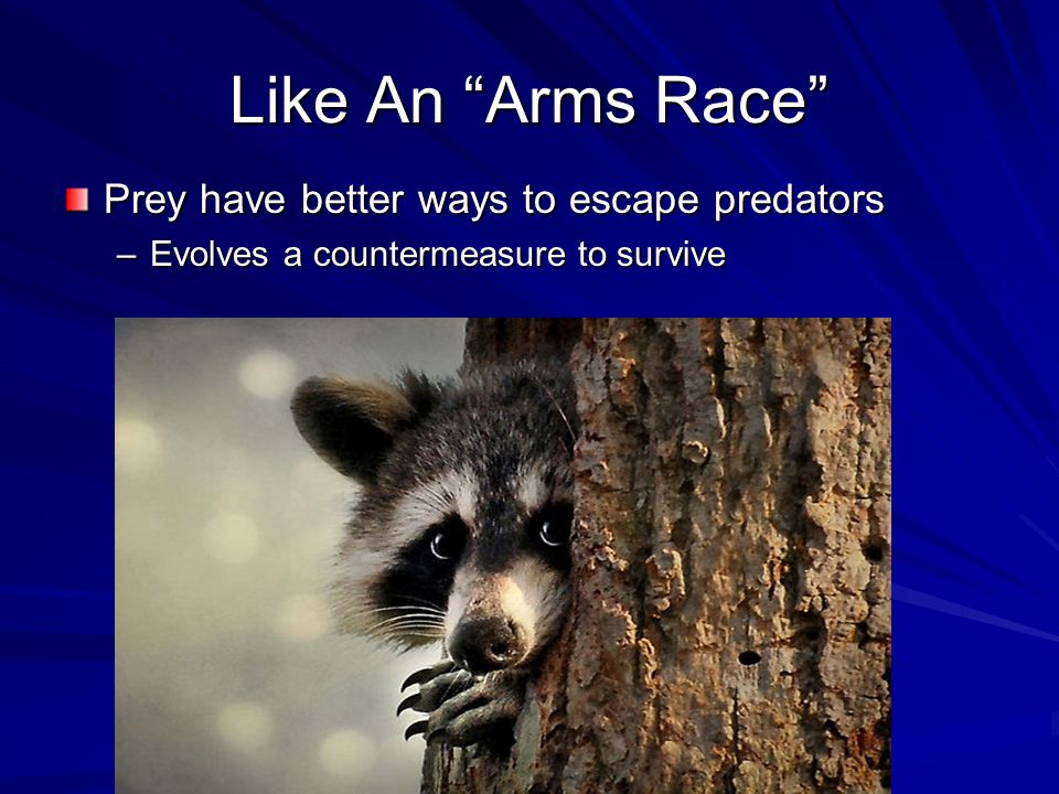 Like An Arms Race Prey have better ways to escape predators