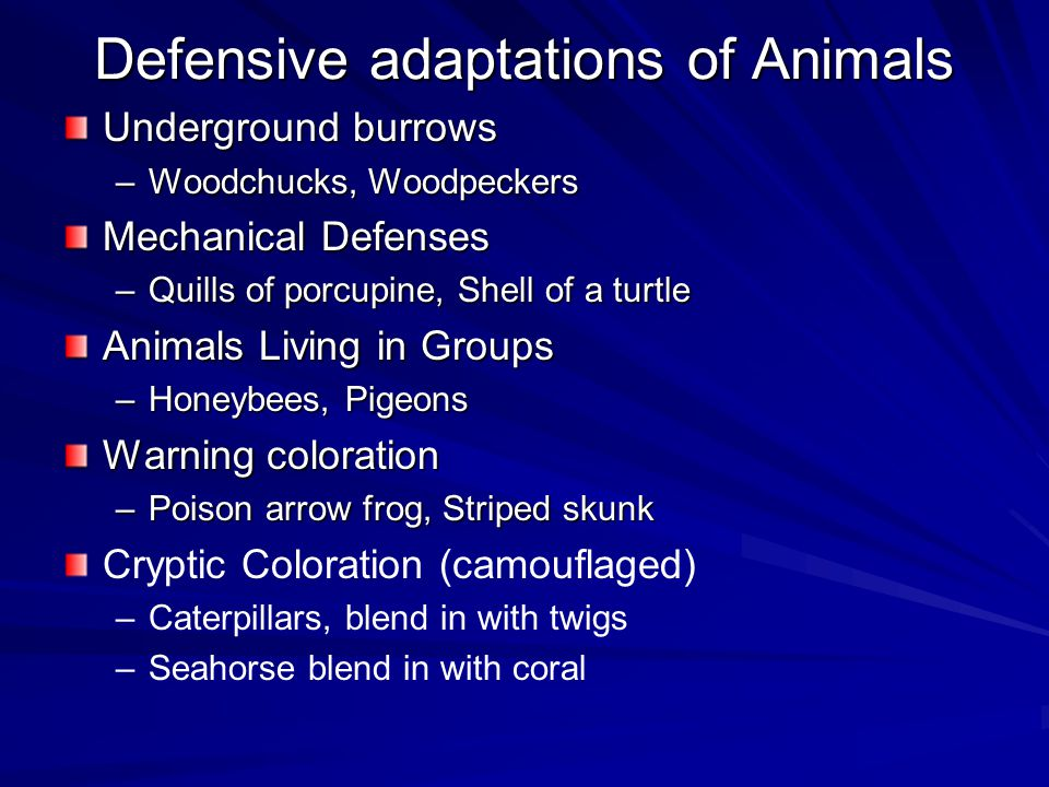 Defensive adaptations of Animals