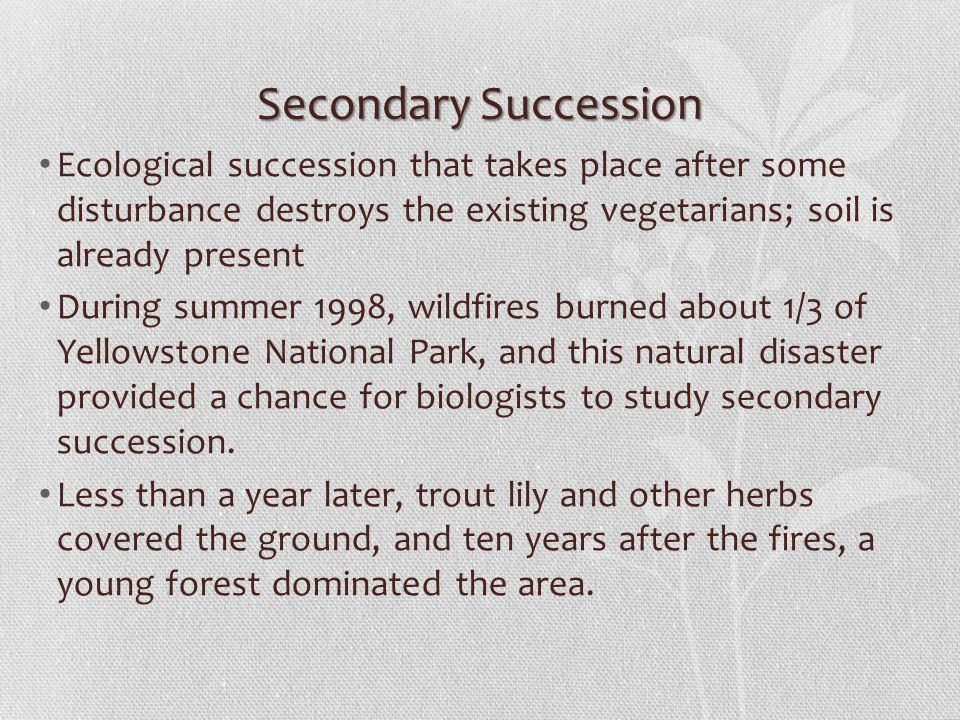 Secondary Succession Ecological succession that takes place after some disturbance destroys the existing vegetarians; soil is already present.