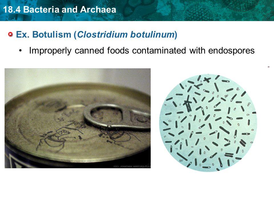 Ex. Botulism (Clostridium botulinum)