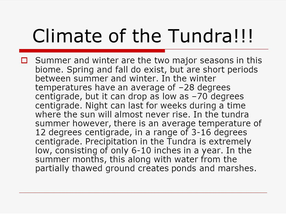 Climate of the Tundra!!!
