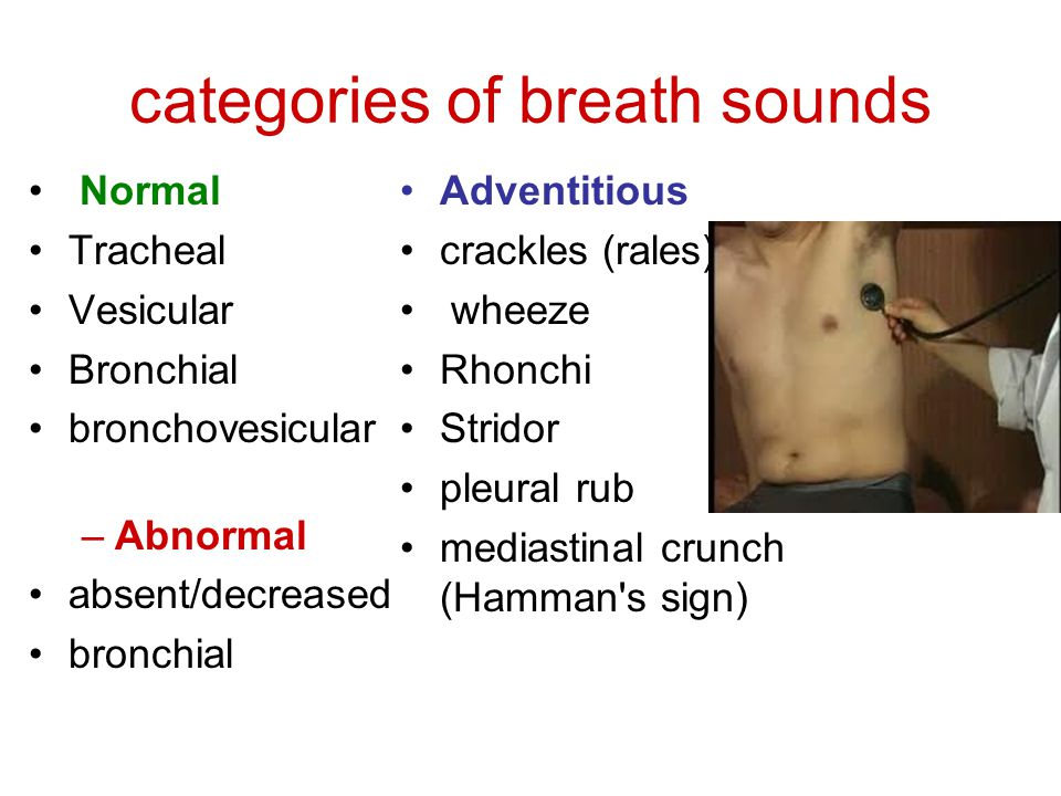 categories of breath sounds