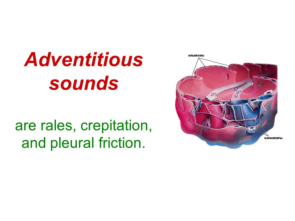 Adventitious sounds are rales, crepitation, and pleural friction.