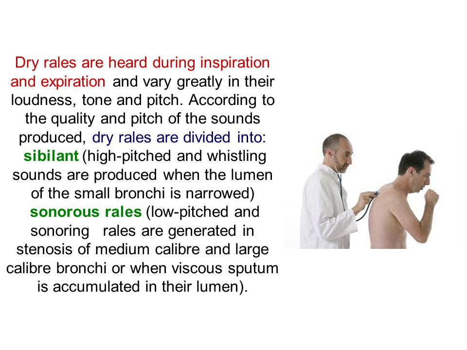 Dry rales are heard during inspiration and expiration and vary greatly in their loudness, tone and pitch.