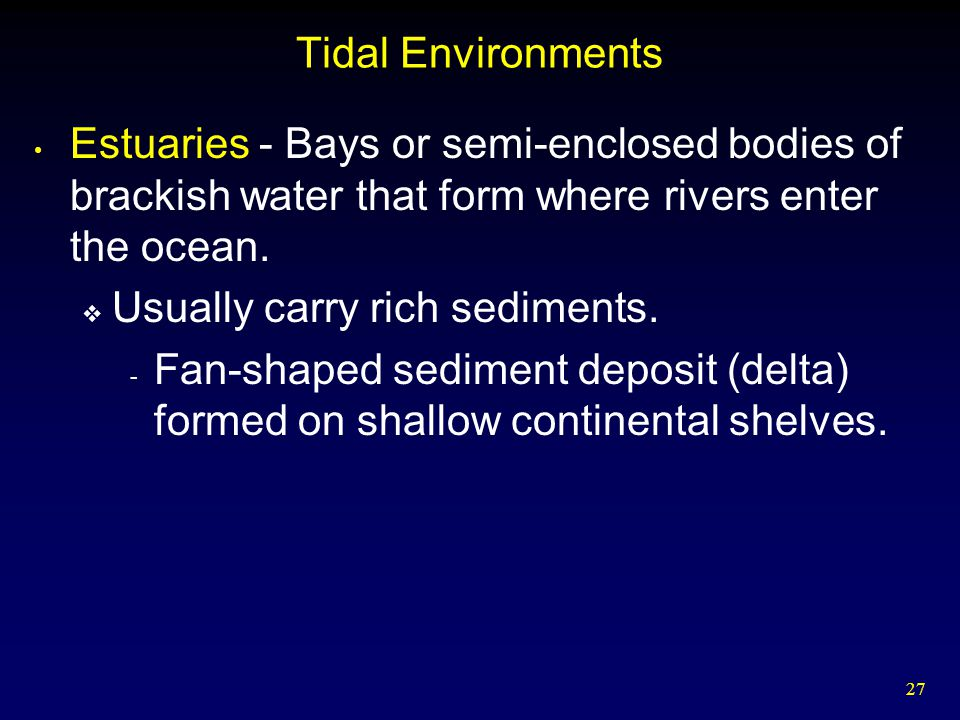 Tidal Environments Estuaries - Bays or semi-enclosed bodies of brackish water that form where rivers enter the ocean.