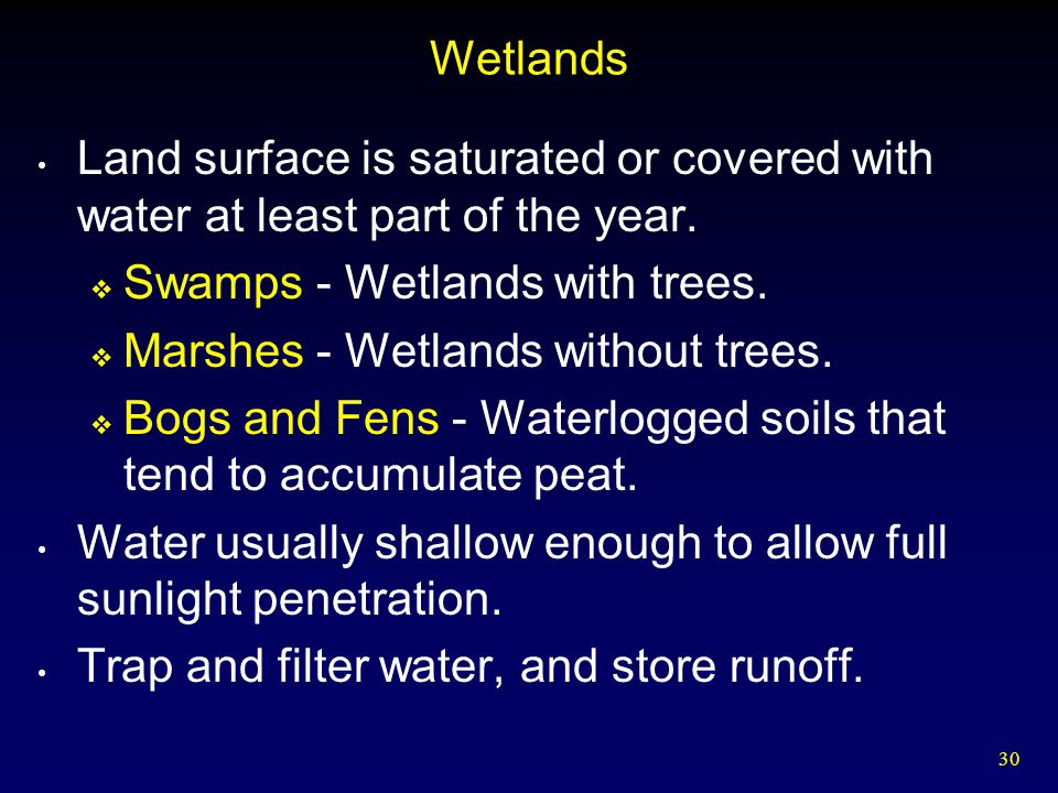 Wetlands Land surface is saturated or covered with water at least part of the year. Swamps - Wetlands with trees.