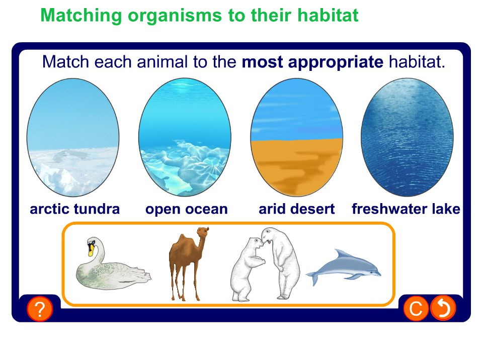 Matching organisms to their habitat