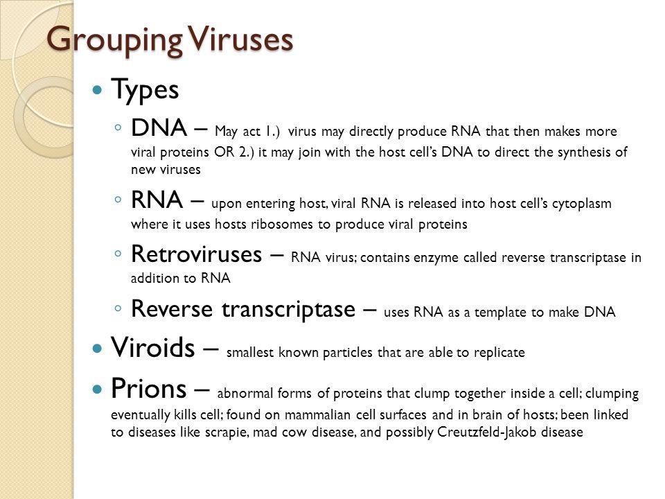 Grouping Viruses Types