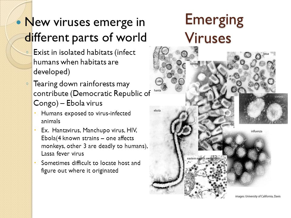 Emerging Viruses New viruses emerge in different parts of world