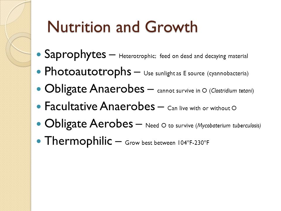 Nutrition and Growth Saprophytes – Heterotrophic; feed on dead and decaying material. Photoautotrophs – Use sunlight as E source (cyannobacteria)