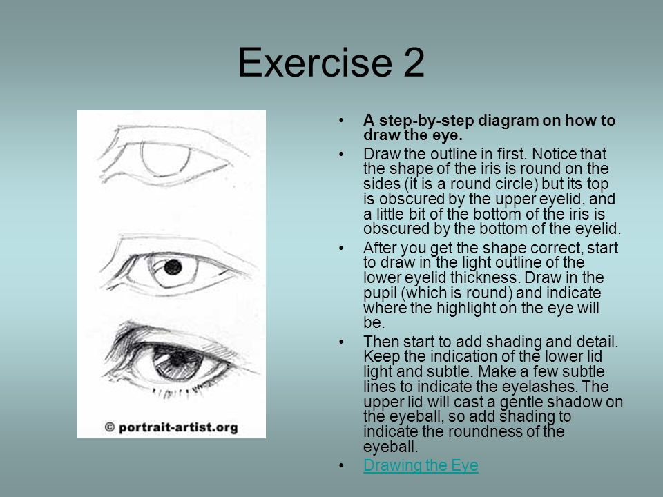 Exercise 2 A step-by-step diagram on how to draw the eye.