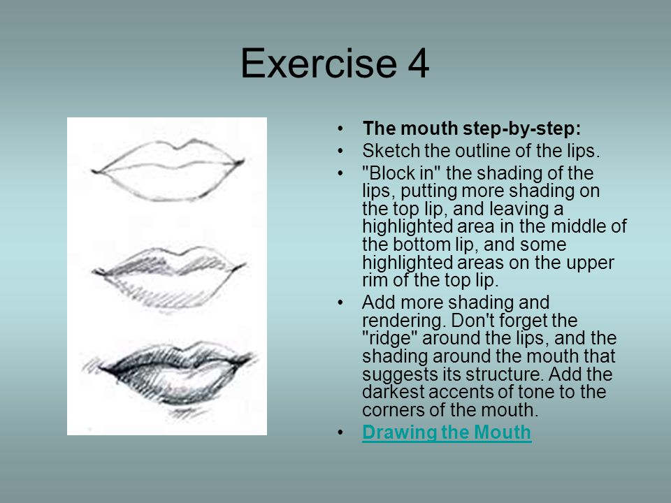 Exercise 4 The mouth step-by-step: Sketch the outline of the lips.