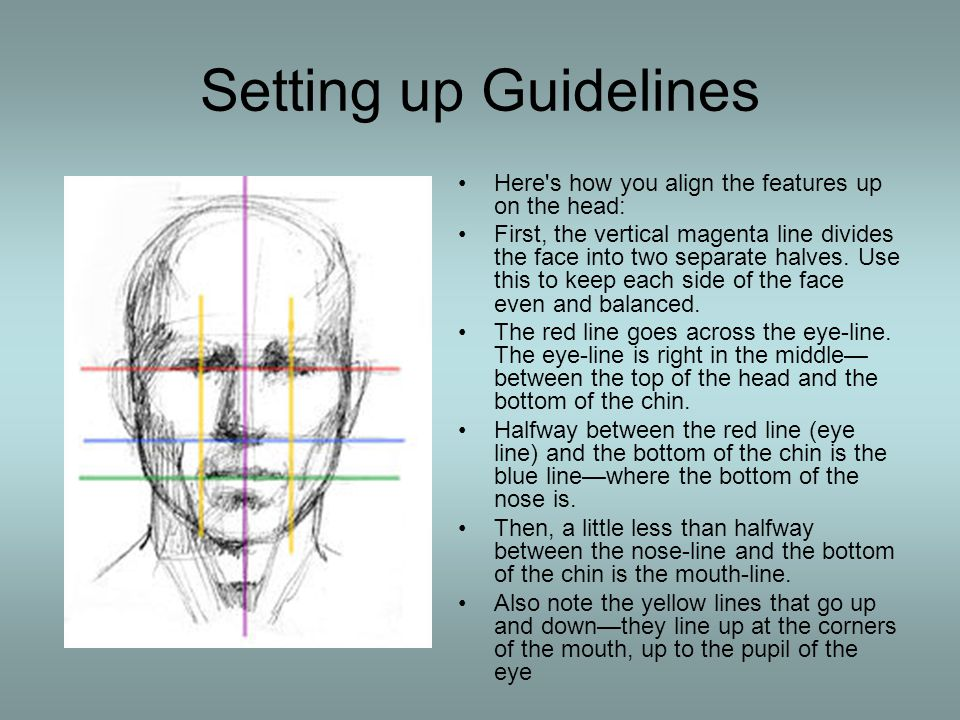 Setting up Guidelines Here s how you align the features up on the head: