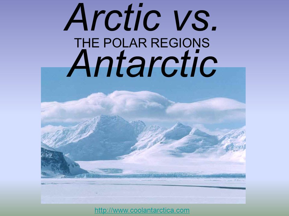 Arctic vs. Antarctic THE POLAR REGIONS http://www.coolantarctica.com