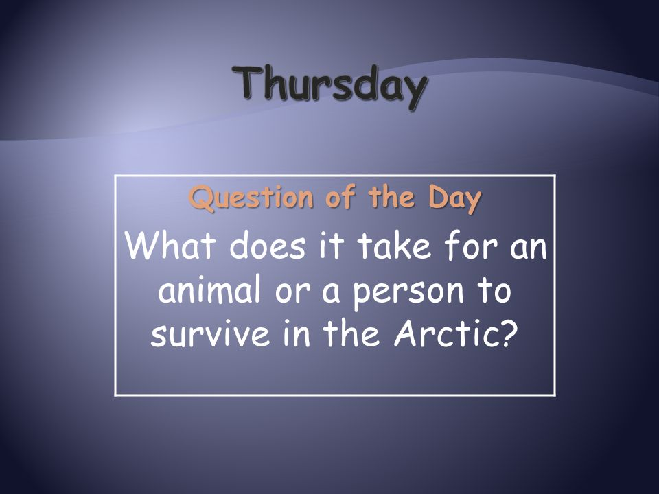 What does it take for an animal or a person to survive in the Arctic
