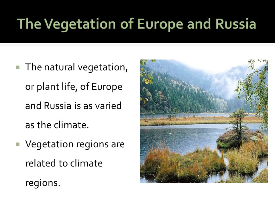 The Vegetation of Europe and Russia