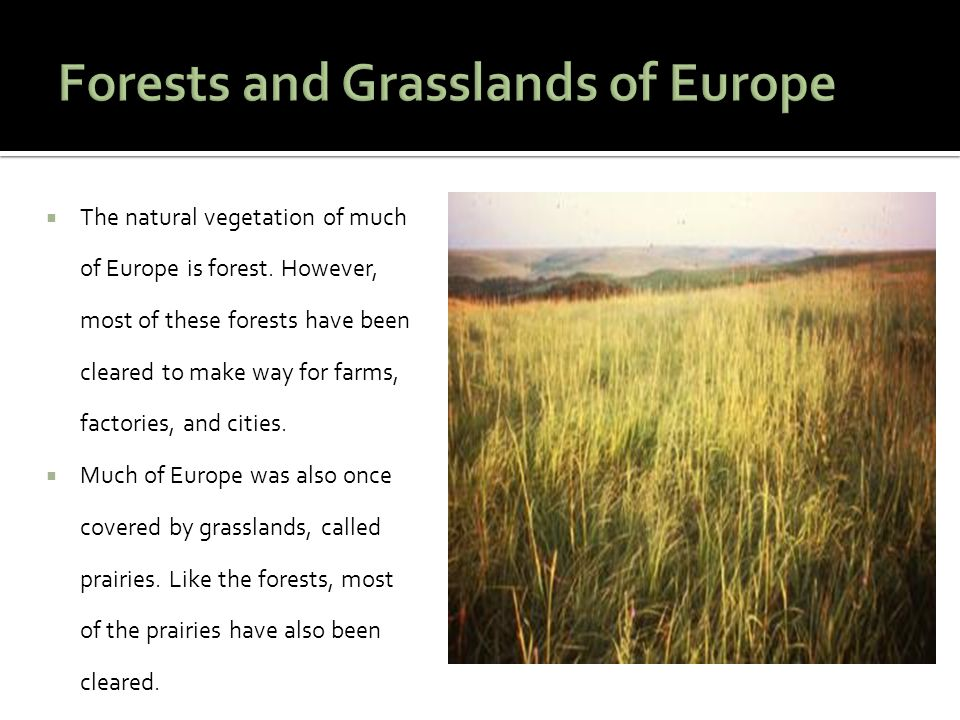 Forests and Grasslands of Europe