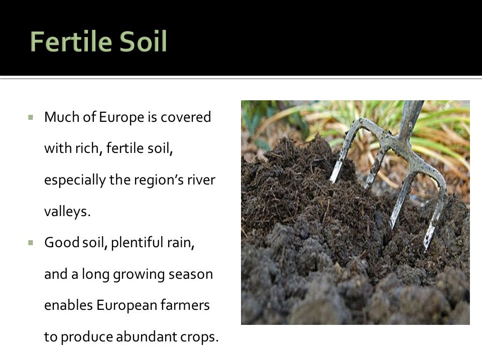 Fertile Soil Much of Europe is covered with rich, fertile soil, especially the region's river valleys.