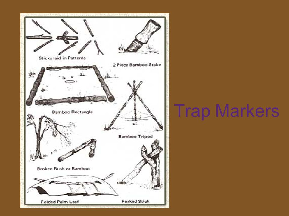 Trap Markers