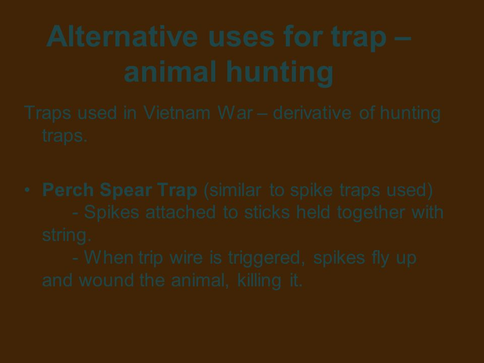 Alternative uses for trap – animal hunting