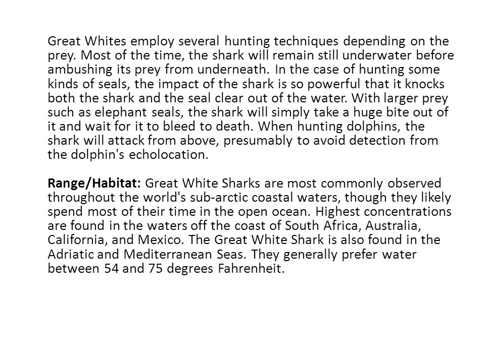 Great Whites employ several hunting techniques depending on the prey