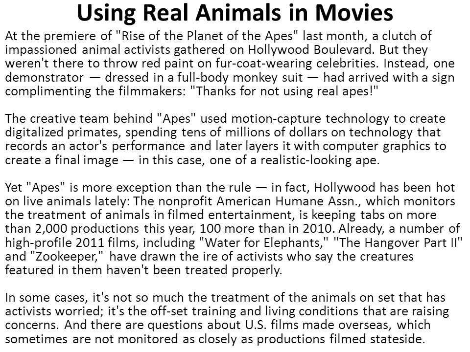 Using Real Animals in Movies