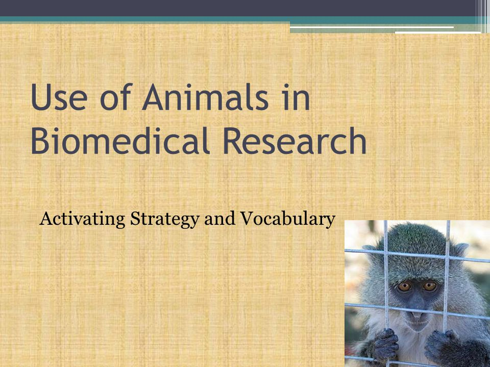 Use of Animals in Biomedical Research