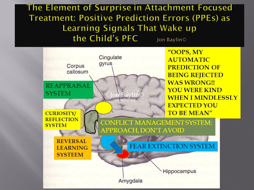 The Element of Surprise in Attachment Focused Treatment: Positive Prediction Errors (PPEs) as Learning Signals That Wake up the Child's PFC Jon Baylin©