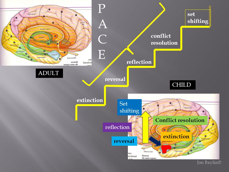 P A C E set shifting conflict resolution reflection ADULT reversal