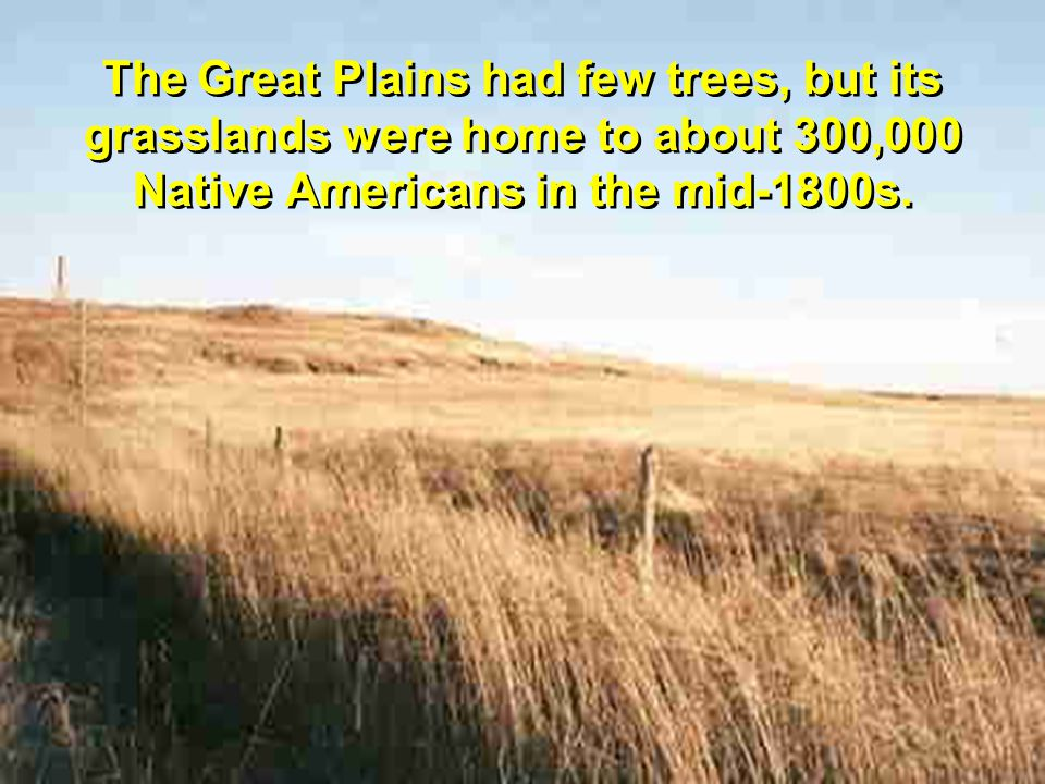 The Great Plains had few trees, but its grasslands were home to about 300,000 Native Americans in the mid-1800s.
