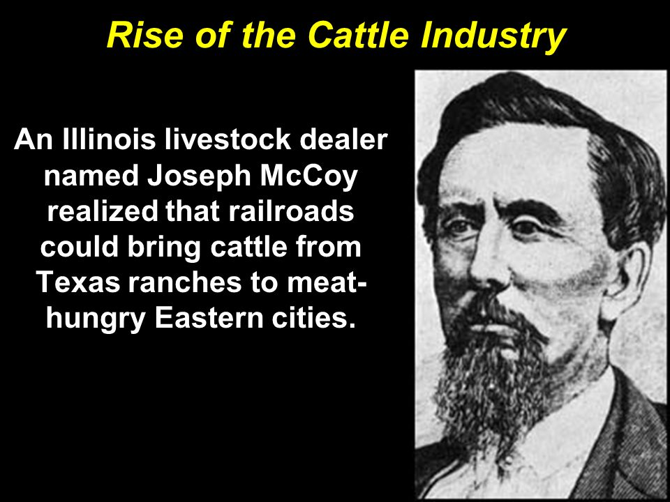 Rise of the Cattle Industry