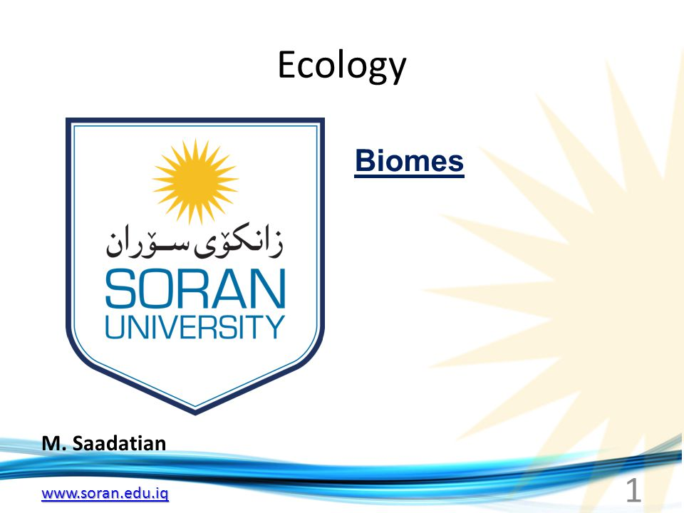 Ecology Biomes M. Saadatian
