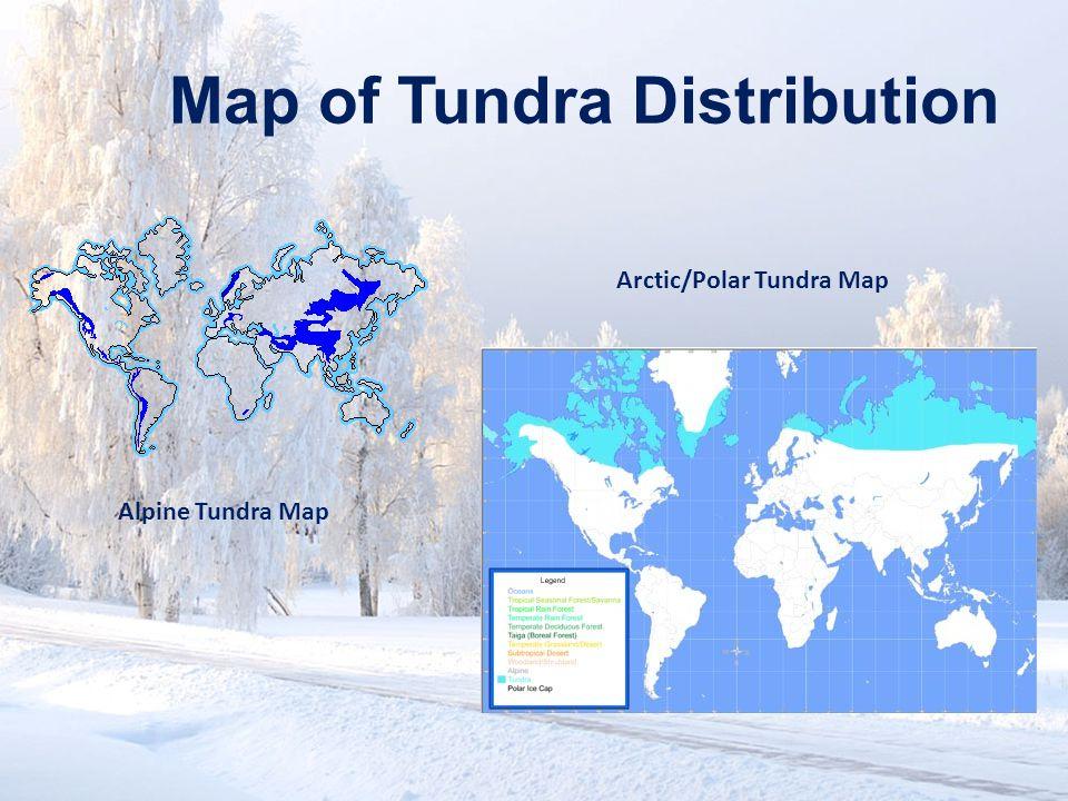 Map of Tundra Distribution