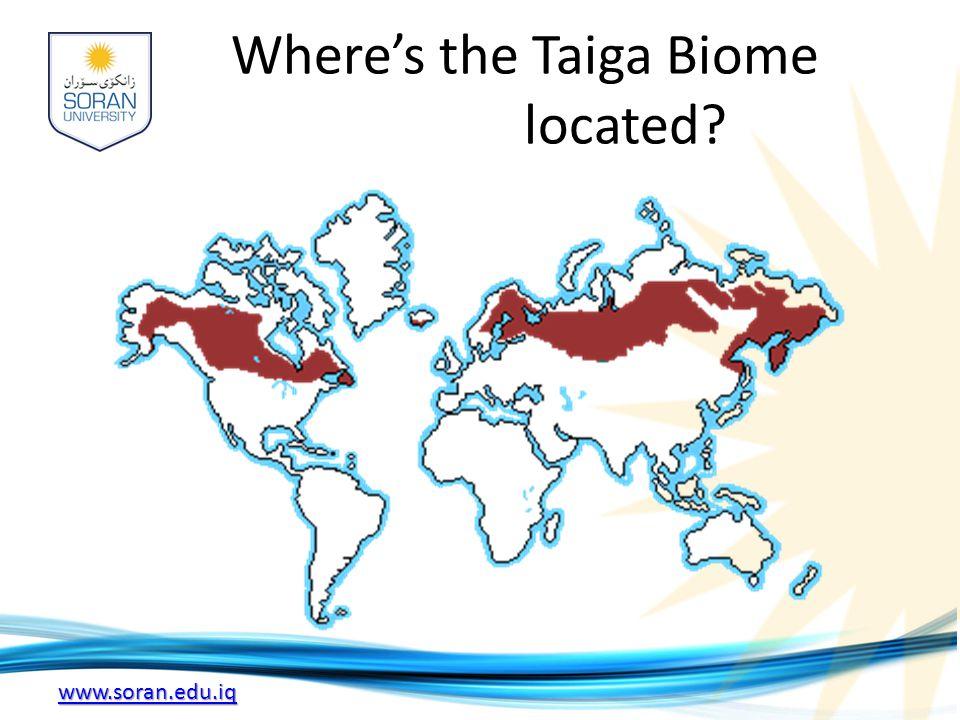 Where's the Taiga Biome located