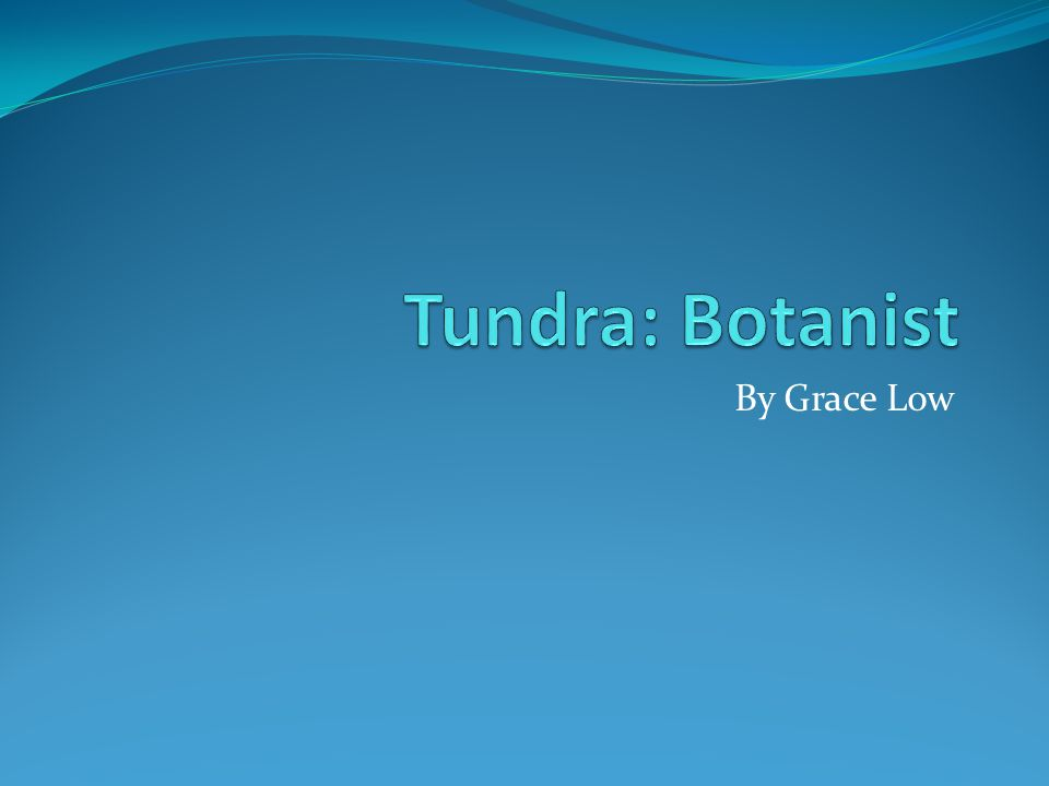 Tundra: Botanist By Grace Low